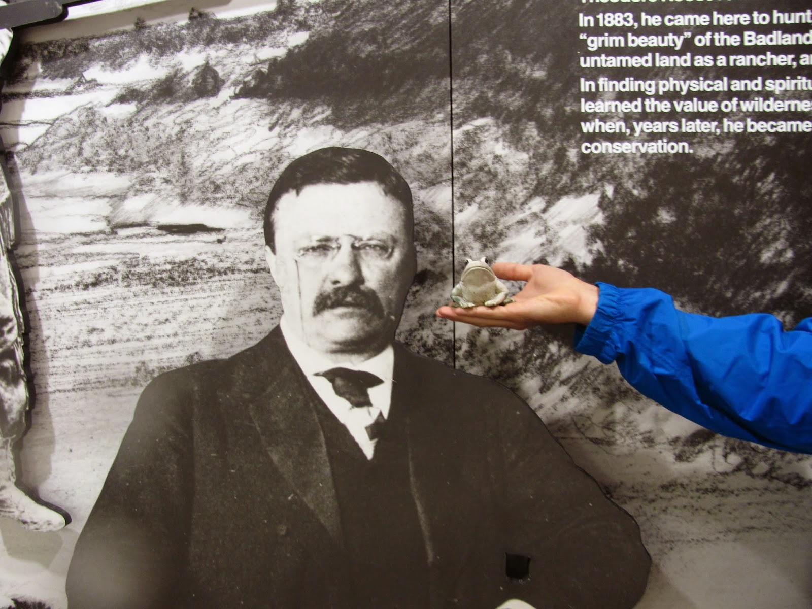 Frog poses in front of a figure of Theodore Roosevelt at Theodore Roosevelt National Park in North Dakota