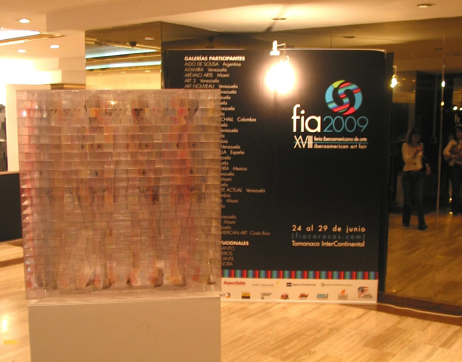 FIA 2009
