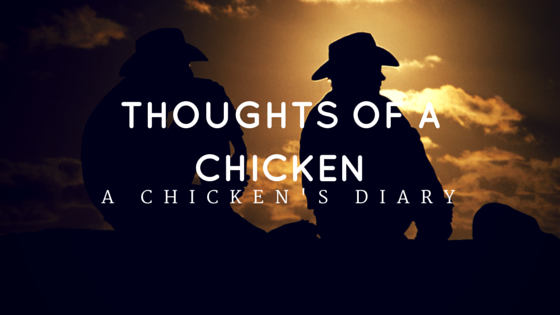 The thoughts of a chicken