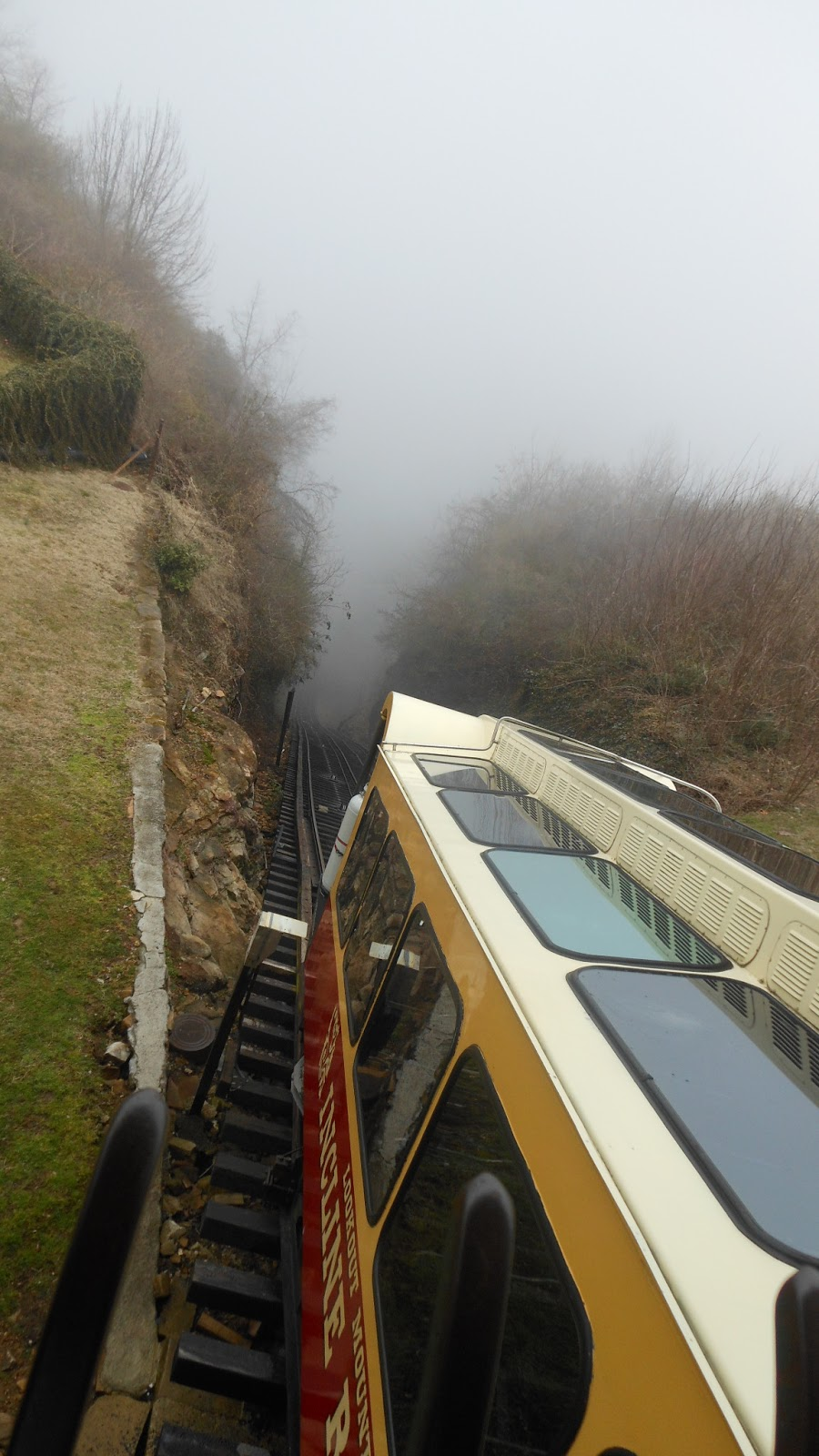 train into the fog