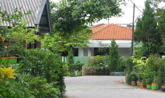 Kampung Wisata Jambangan Surabaya Jawa Timur 2