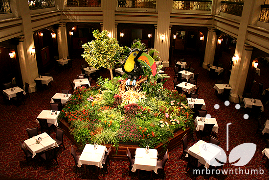 Topiary Toucan Macy's Walnut Room Chicago