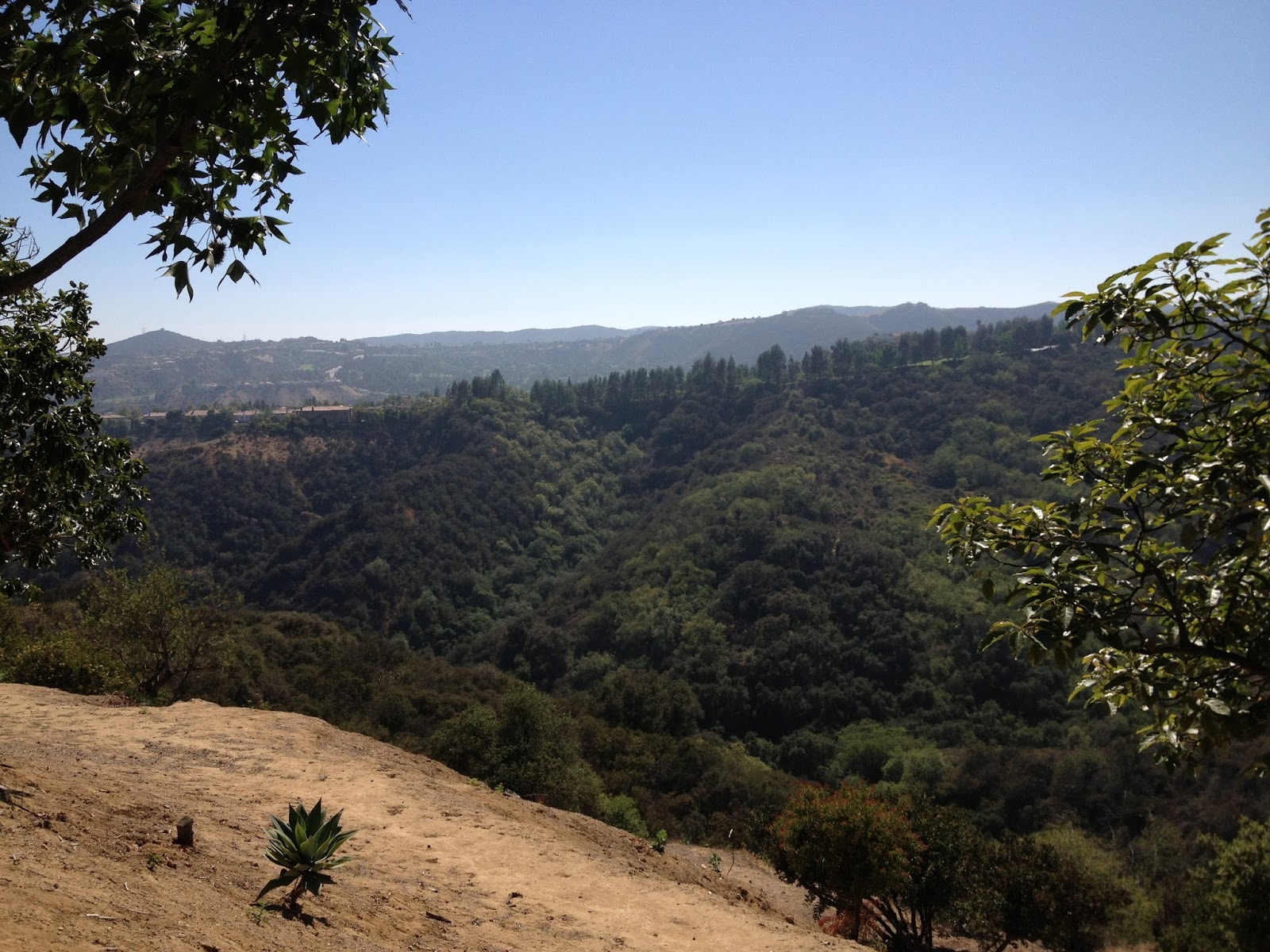 View from Mulholland Drive by Rachel Medanic