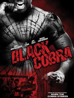 Phi Vụ Hắc Xà Black Cobra
