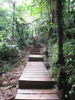 Sentier d'accès à la 1ère chute