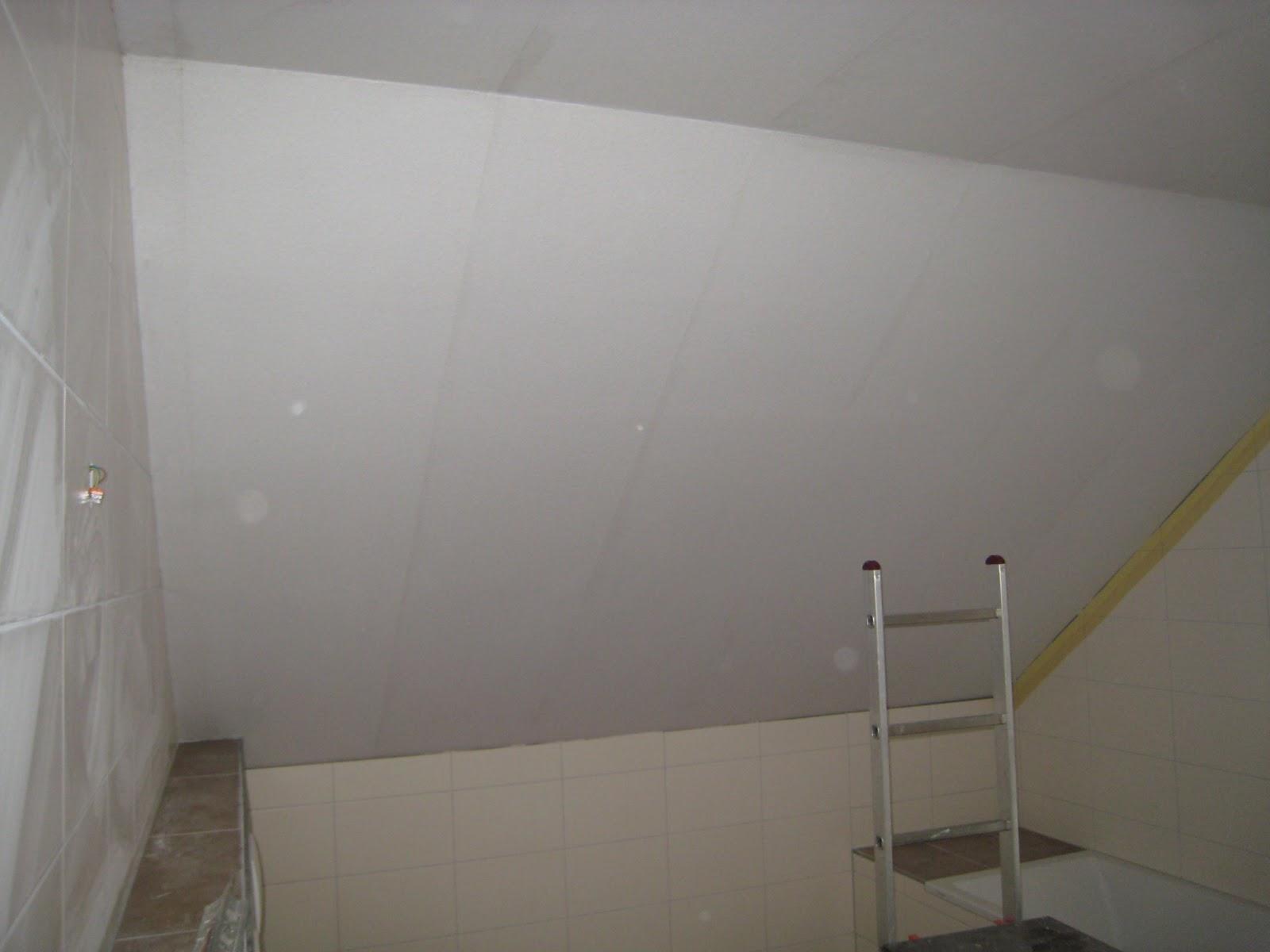 stein auf stein das haus wird bald fertig sein decke im wohnzimmer ist angelegt. Black Bedroom Furniture Sets. Home Design Ideas
