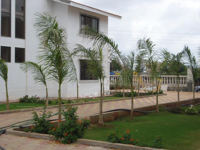 http://2.bp.blogspot.com/-w4_2Yi3UiZY/UJ03TyHyd-I/AAAAAAAAAVw/Qe6I5yfzQ_w/s640/Project+1+-+Garden.jpg