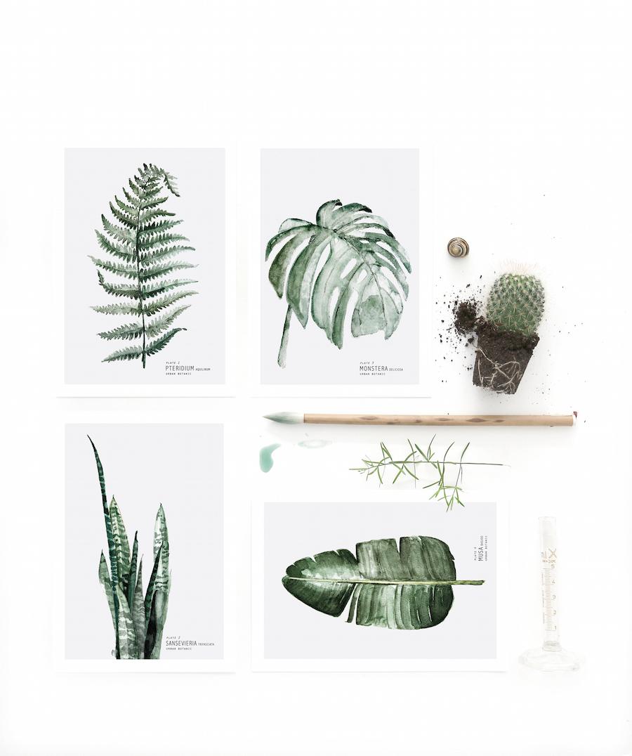 green,акварель,интерьер, зеленый