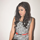 Ruby Parihar Photos in Short Dress at Premalo ABC Movie Audio Launch Function 59