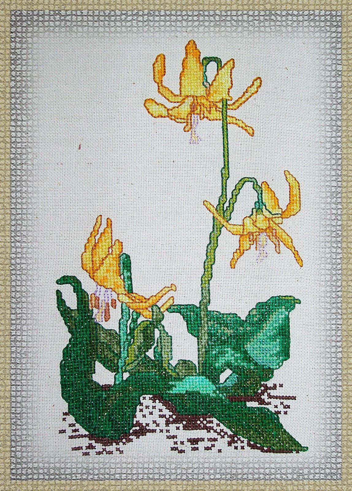 цветочные схемы