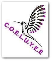 Proyecto COELUYEE