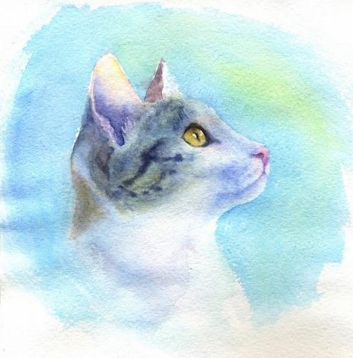 кошка акварель