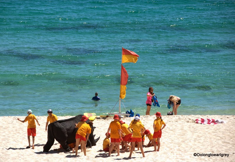 Sculpture by the sea Cottesloe 2014, gift of the rhinoceros