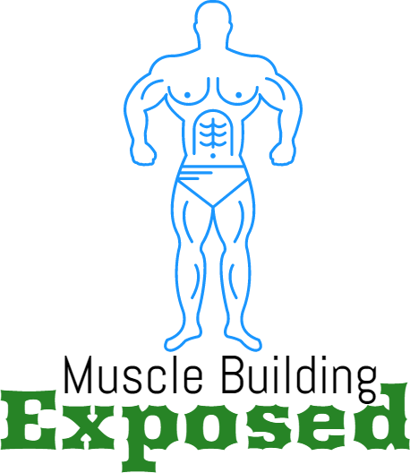 Muscle Building Exposed:Tips on how to build muscle fast