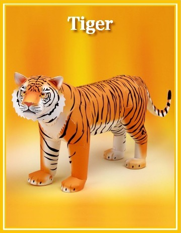 Example of Descriptive Text - Tiger