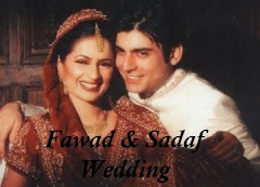 Fawad Khan Wedding Photos