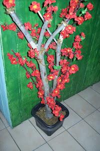 Arvore em hastes pessego vermelha