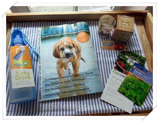 Easy Drink Flasche, City Dog Zeitschrift, Teelicht und Rezeptkarte mit Petersiliensamen