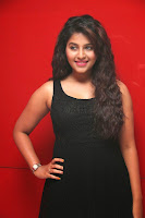 Anjali latest sizzling  Pictures 023.jpg