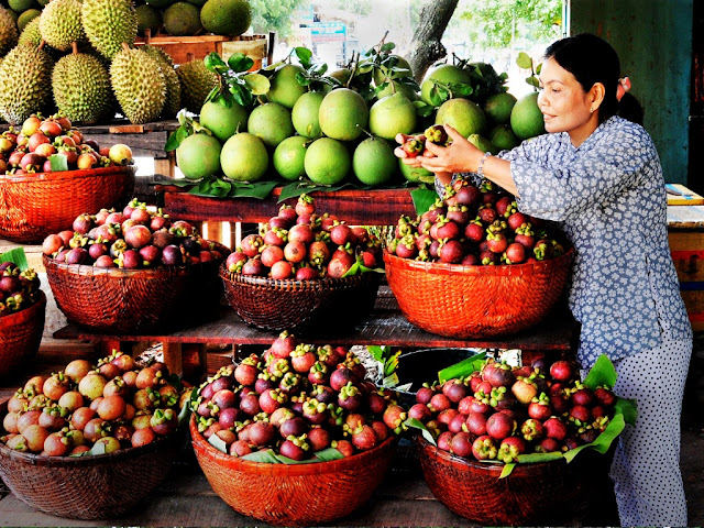 Vietnamese fruits