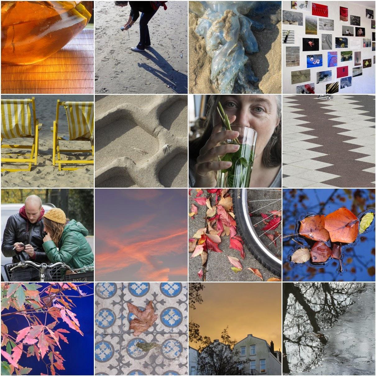 mosaic of Fall, 2014
