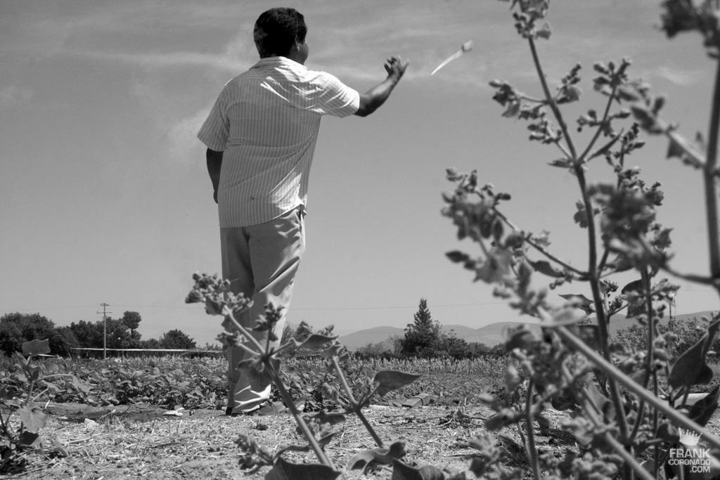 hombre lanzando cohetes en oaxaca