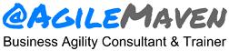 Blog@AgileMaven · Vishal Prasad · Business Agility Consultant · ICAgile Authorized Instructor ·