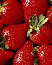 Jagode voće download besplatne slike pozadine za mobitele