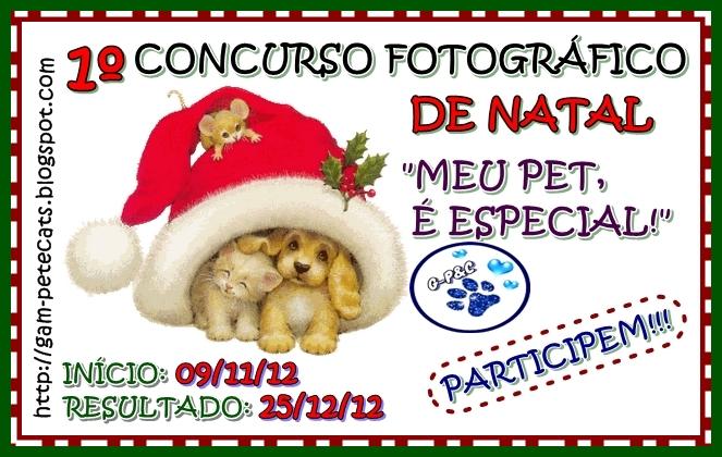 Concurso fotográfico de Natal Gam - Pet & Cats