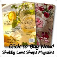 Shabby Lane Shops Magazine