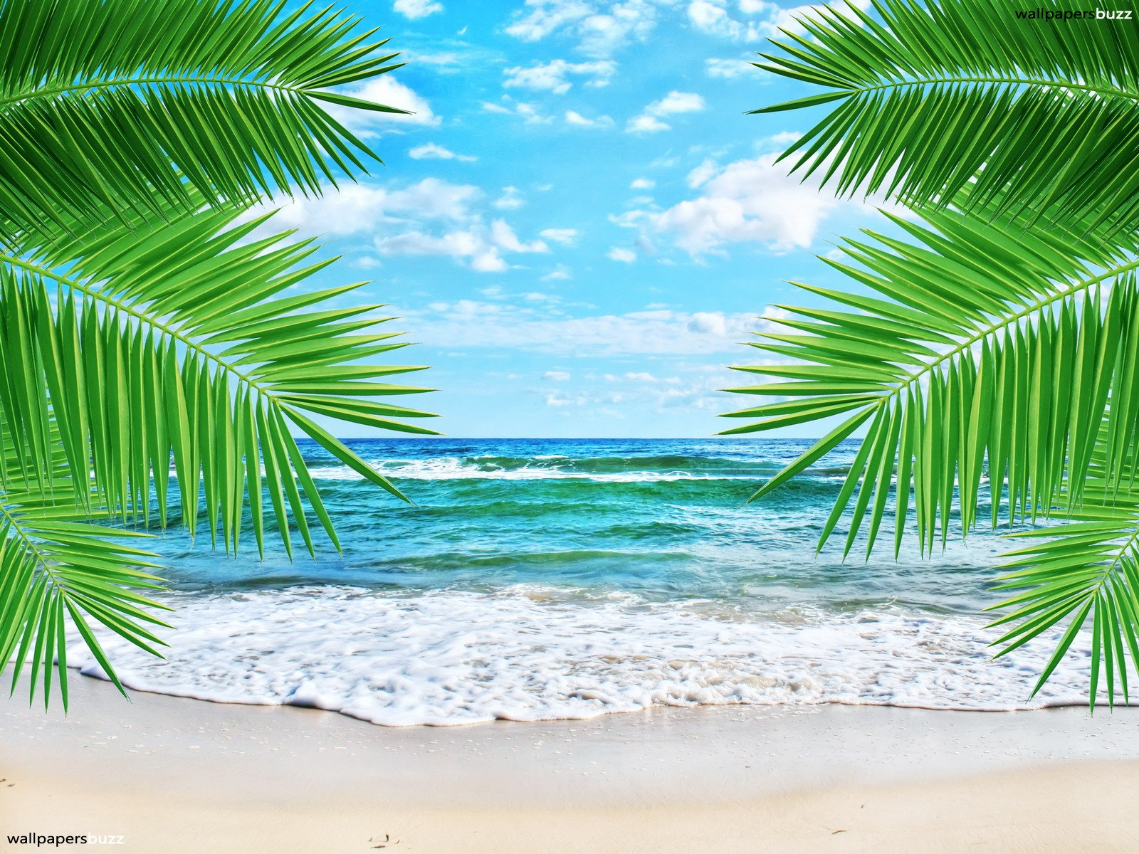 Beach Wallpaper