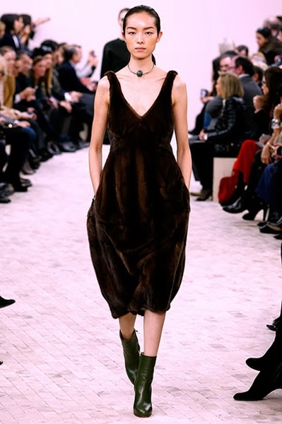Celine FW 2013 Brown Mink Dress