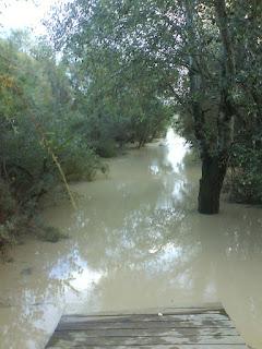 Crecida del río Gállgo 21/10/2012 riada Zaragoza