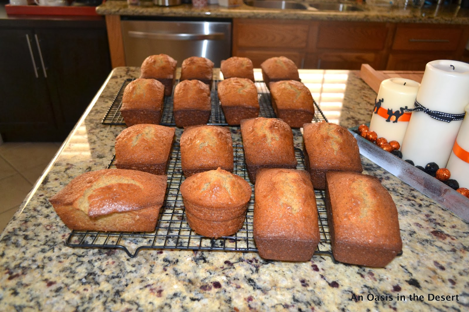 An Oasis In The Desert Amish Friendship Bread