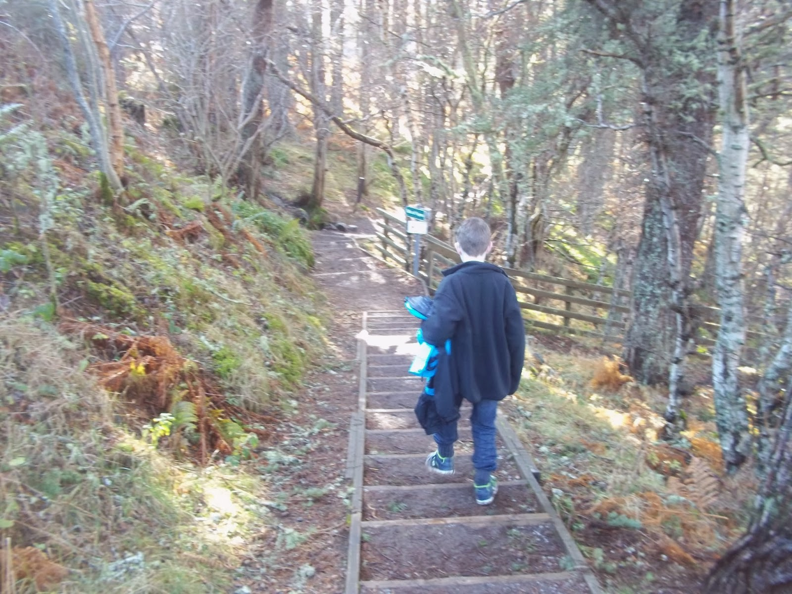 Falls of Foyers steps