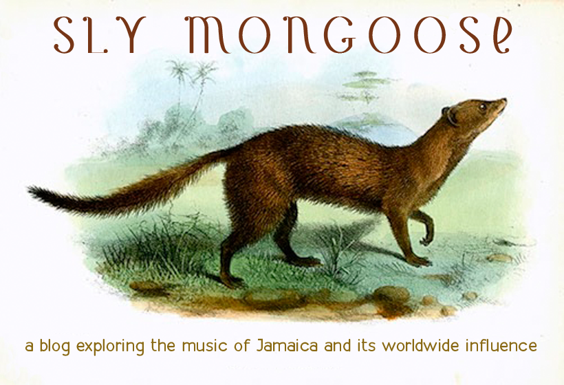 Sly Mongoose
