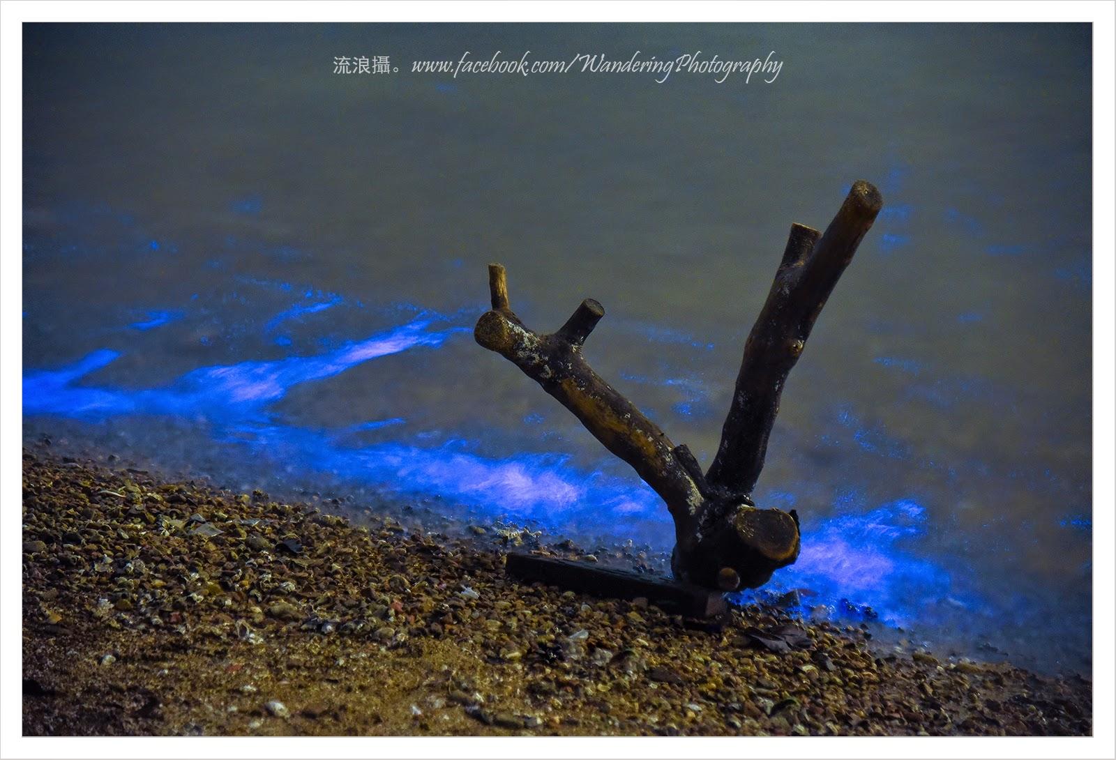 「流浪攝」屬於香港人的藍眼淚