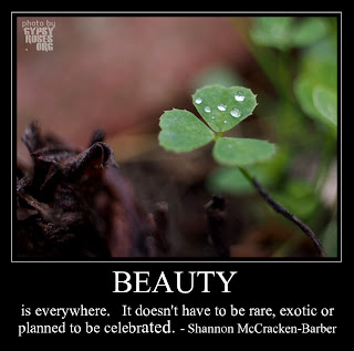 Beauty Meme: beauty is everywhere.