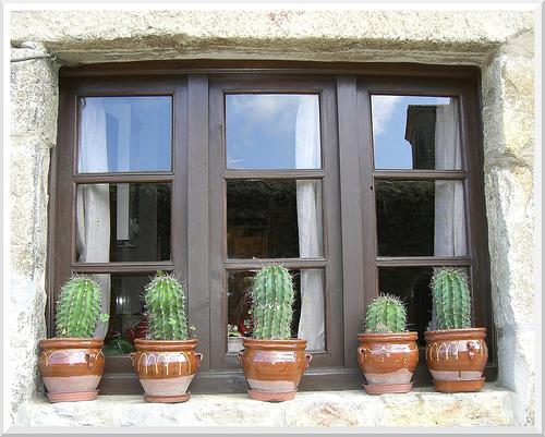 Maceta en repisa de la ventana casa dise o - La casa de la maceta ...