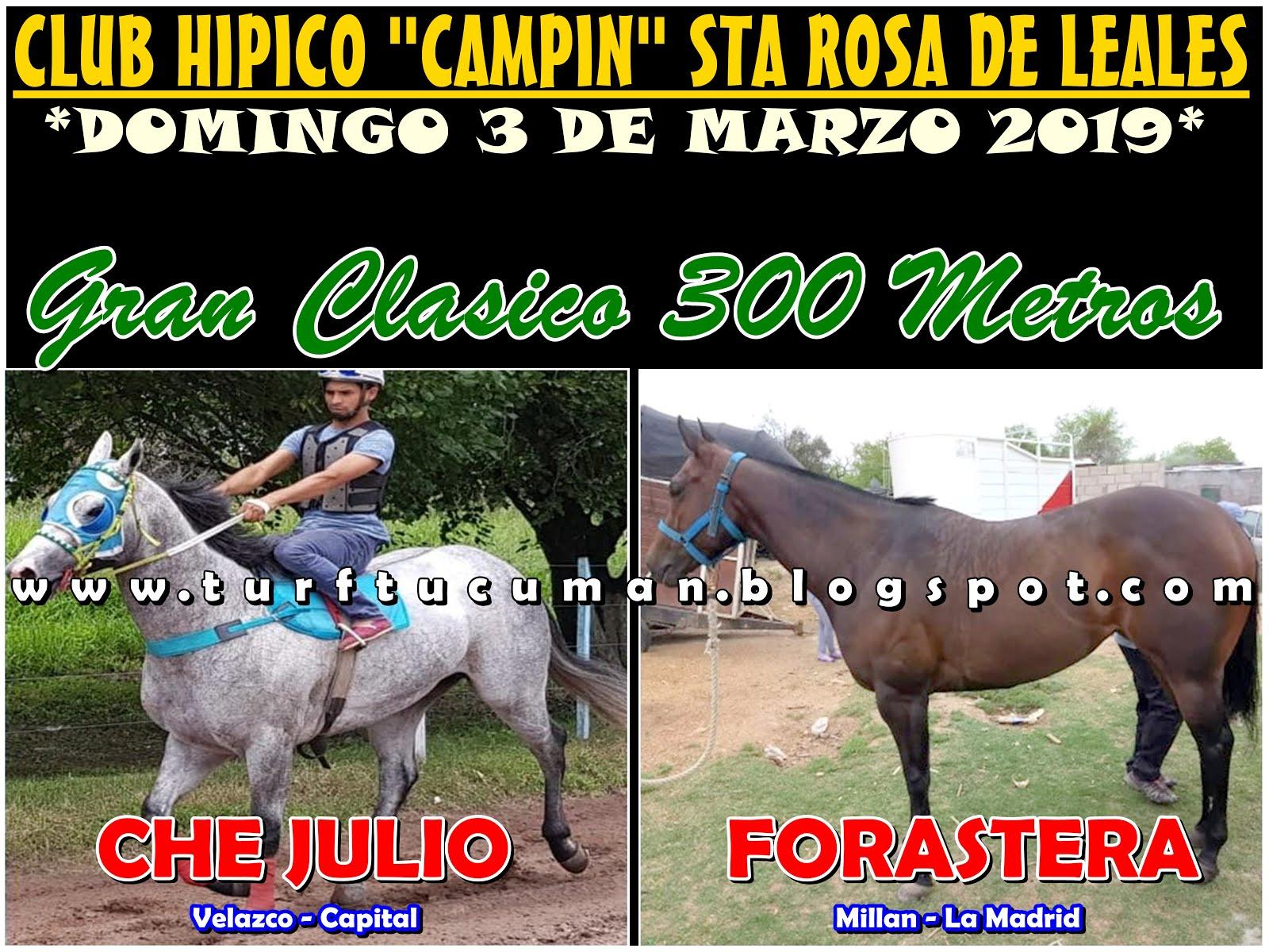 CHE JULIO VS FORASTERA