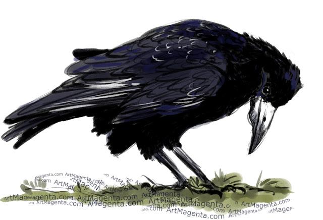 En fågelmålning av en råka från Artmagentas svenska galleri om fåglar