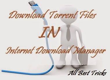 How To Download Torrents File Sharing In IDM