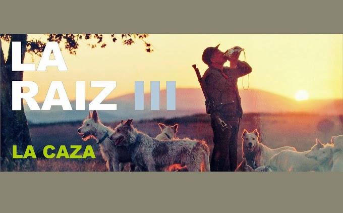 Revista LA RAIZ - Número III