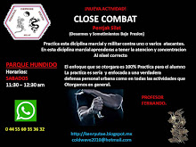 CLASES DE CLOSE COMBAT (DEFENSA PERSONAL MILITAR)