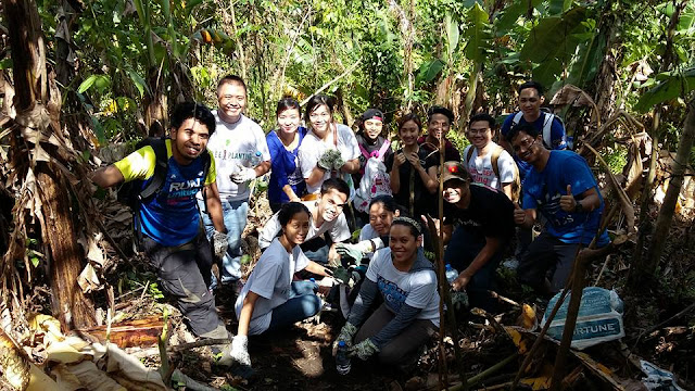 Philweb Tree Planting Activity 2015