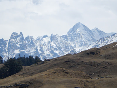 Gorson Top, Trishul peaks, Gorson Bugyal, Auli, Garhwal, Uttarakhand, weekend getaway, Himalayas, trek