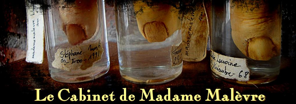 Le Cabinet de Madame Malèvre