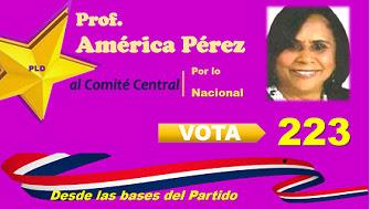 américa al comité central vota 223