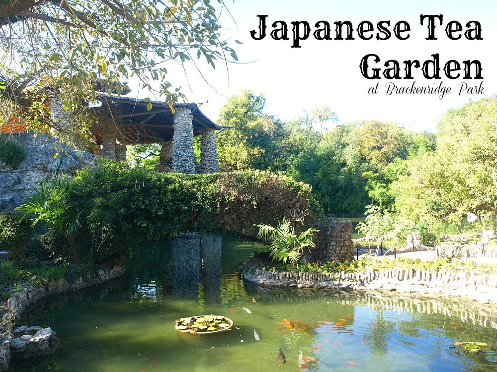 This Little Miggy Stayed Home Exploring San Antonio Japanese Tea Garden