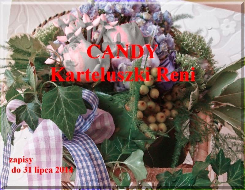 Candy z dokładką u Reni!